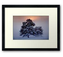 Ashdown Forrest Snow Scene Framed Print