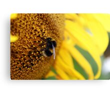 Busy Bumble Metal Print