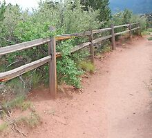 Fence by TitusXavier