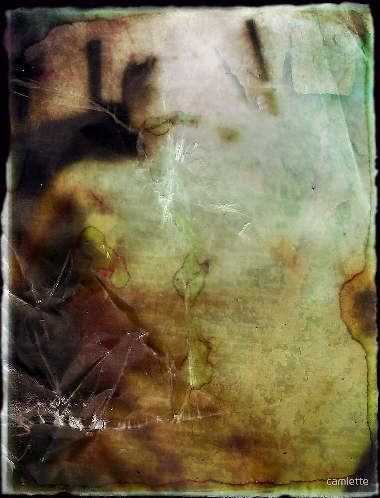 Altered, Dark Annie Chapman by Cameron Hampton
