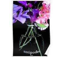 Antipodes, still Poster
