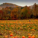 A Fall Scene - PUMPKIN PATCH ^ by ctheworld