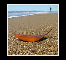 Leave the Beach by Susan Segal