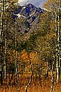 """Autumn At Mount Tallac"" by Lynn Bawden"