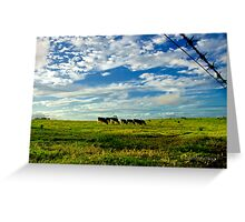 Late Afternoon Grazing Greeting Card