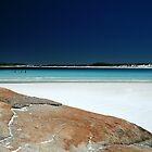 Whartons Beach by Susan Segal
