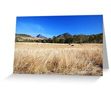 Winter in Queensland Greeting Card