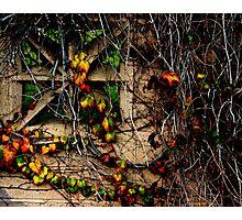 Wildomar Cemetery Wall Photographic Print