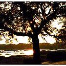 Beaufort Sundown by Larry Oates