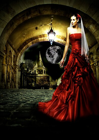 Girl in a Red Dress by Andrew (ark photograhy art)