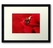 Good luck red.... Framed Print
