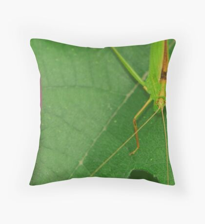 insect and flower Throw Pillow