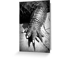 Alligator's Foot Greeting Card