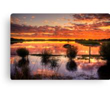 Sensational reflections at Rivoli Wetlands, near Beachport Canvas Print