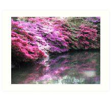 Pretty pink azaleas with shadow over stream  Art Print