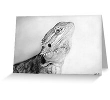 Draco Greeting Card