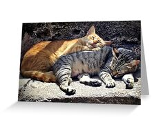 sleeping pair Greeting Card