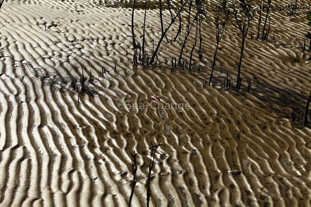 Ripples in the Mangroves by Sea-Change