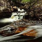Glen Orchy Falls by Brian Kerr