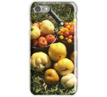 Tomato Harvest iPhone Case/Skin