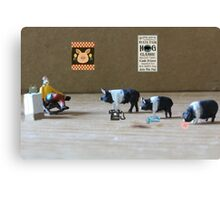 Harley shows he is determined to take first place in this year's hog calling contest Canvas Print