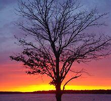 Sunset over Lake Charlevoix- Boyne City, Michigan by Melissa Delaney