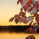 Fall on Little Lake- Little Lake, Michigan by Melissa Delaney