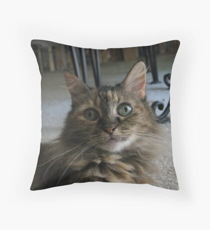 What Was That? Throw Pillow