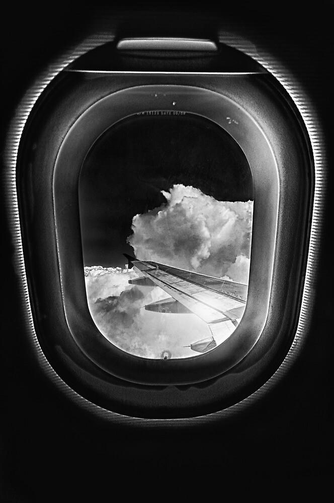 Sky Miles by Bob Larson