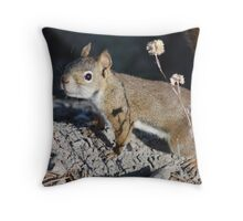 Squirel in Yellowstone Canyon Throw Pillow