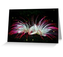 Flowers On Black Sand Beach Greeting Card