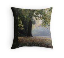 Soft Colours of Autumn - Mt Wilson NSW Australia Throw Pillow
