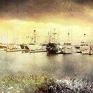 Seaport Village View by Rozalia Toth