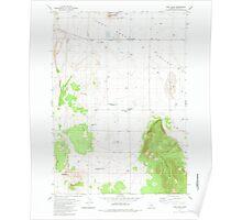 USGS Topo Map Oregon Fort Rock 279929 1981 24000 Poster