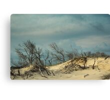 Lost in the Sand Canvas Print