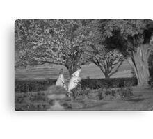 Girls through the Garden Canvas Print