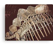 Stegosaurus Abstract Canvas Print