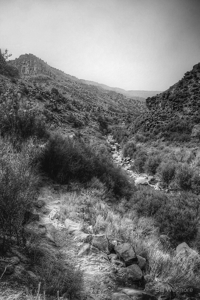 Along the Stream - hiking the Rio Grande Rift by Bill Wetmore