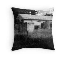 Abandoned factory near Tantanoola, South Australia Throw Pillow