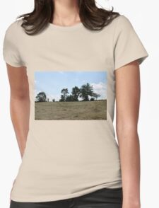 countryside landscape with hay Womens Fitted T-Shirt
