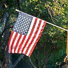 In memory of September 11, 2001 by Ann Reece