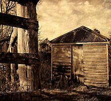 The Old Milk Shed_2 by Marian Moore