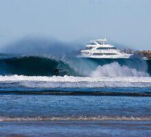 Sea World Cruisers by Matt Ryan