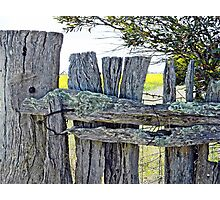 Old Farm Fence Photographic Print