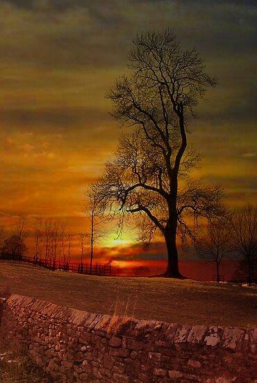 Sunset in Downham . by Irene  Burdell