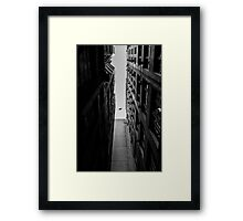 Jungle - Hawk in the City Framed Print