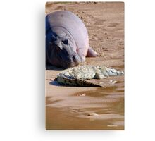 FRIENDS FOR......EVER, WITH MY SIZE... YES! - the Hippo's and the Crocodiles Canvas Print