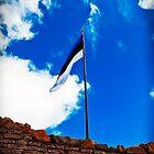 Estonian Flag by tutulele