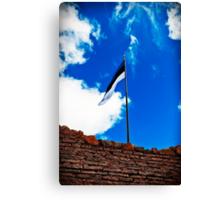 Estonian Flag Canvas Print