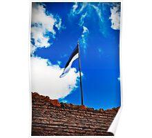 Estonian Flag Poster